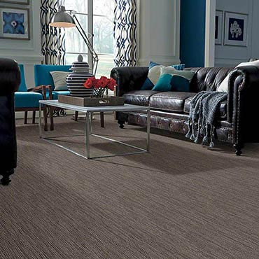 Anso® Nylon Carpet | Glastonbury, CT